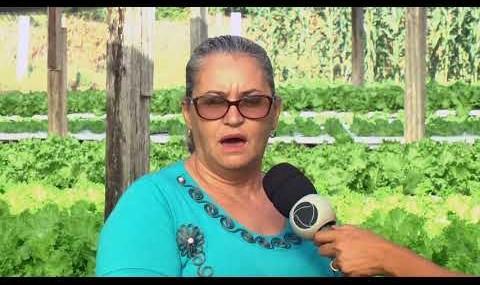 Família rolimourense investe em alface hidropônica