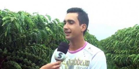 Produtor se destaca com plantação de café livre de agrotóxicos em Alto Alegre dos...