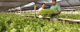 Com Banco do Povo, microempreendedores aumentam produção em Rolim de Moura
