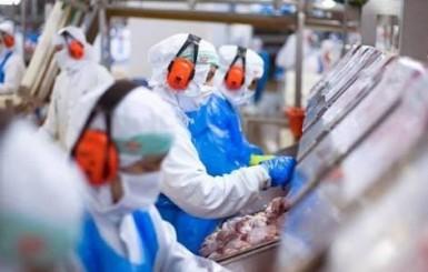 Frigorífico Marfrig de Ji-Paraná abre processo seletivo para contratação de mil trabalhadores