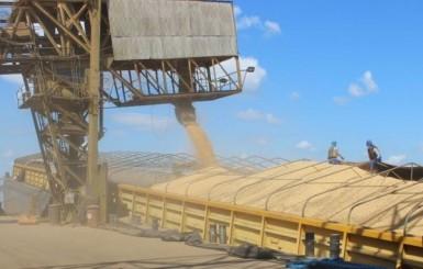 Rondônia se projeta como grande celeiro de alimentos para mercados internacionais
