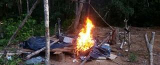 Ibama incendeia acampamentos de madeireiros e trator em reserva florestal
