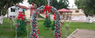 Rolim de Moura começa a ser decorada para o 'Natal de Luz'