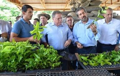 Rolim de Moura: Ministro Blairo Maggi visita produtores de café clonal
