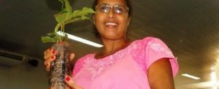 Agricultores familiares de Rolim de Moura recebem mudas de café clonal e são alertados a utilizar...