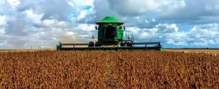 Exportação de Rondônia chegam a US$ 1,2 bilhão