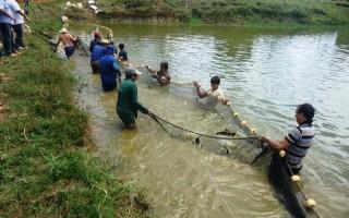 Qualidade hídrica fortalece piscicultura