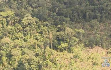 Liminar dá prazo para que medidas de proteção da terra indígena Karipuna sejam tomadas, em RO