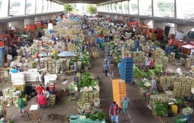 Peixes de Rondônia fisgam negócios na Fispal 2018