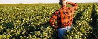 Prazo para produtor rural declarar ITR termina hoje