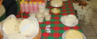 Produtores de Cacoal são capacitados sobre fabricação de produtos a base de leite
