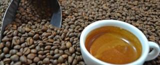 Robusta Amazônico - Rondônia tem café especial!