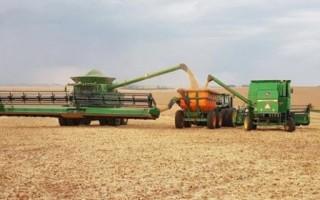 RONDÔNIA – Aumento de área plantada impulsiona produção de grãos no estado
