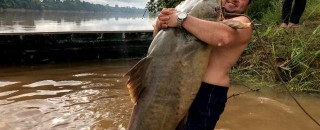 JAÚ: Pescadores rondonienses capturam peixe de 112 quilos no rio Machado