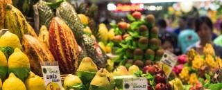 PL quer que mercados deem destaque a produtos da agricultura familiar