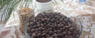 RONDÔNIA – Produtividade do café cresce mais de 18% nesta safra
