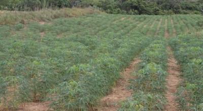 Rondônia alcança 43% da meta do Cadastro Ambiental Rural a menos de seis meses do prazo final