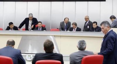 Assembleia aprova projeto de abate de búfalos do Vale do Guaporé