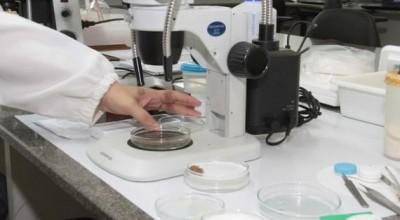 Rondônia vive novo tempo na área da pesquisa, diz presidente da Fundação de Amparo das Ações Científicas