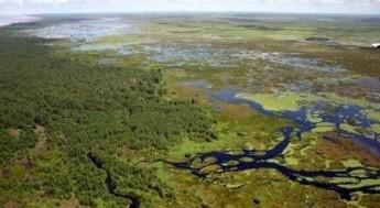Setur integra conselho do Parque Nacional Mapinguari