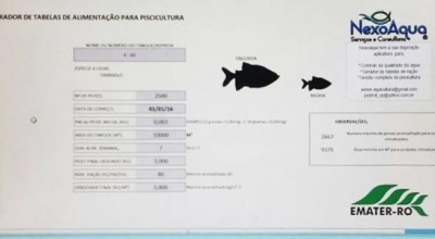 Aplicativo para gestão de piscicultura será forte aliado dos produtores de tambaqui em Rondônia