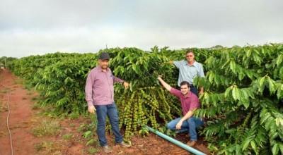 Secretário de Agricultura de Rolim de Moura acompanhado dos vereadores Alisson e Chico do Sindicato visitaram o viveiro de Café Clonal em Alto Alegre