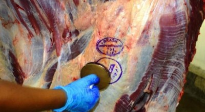 Exportações de carne bovina têm alta de 24% no estado de Rondônia