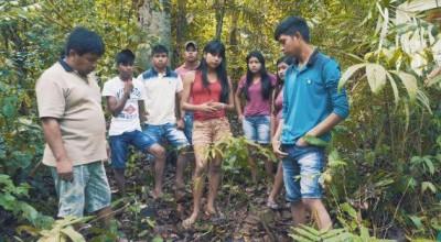 Educação Indígena de Rondônia concorre a prêmio nacional com projeto sobre plantas medicinais, em Cacoal
