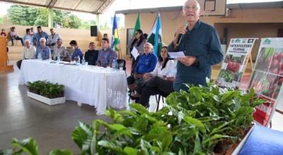 Primavera de Rondônia recebe mais 180 mil mudas de café clonal e eleva lavoura para 400 hectares plantados