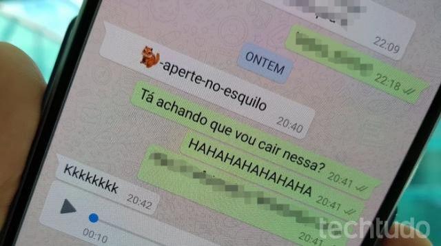 Falha no WhatsApp trava app e até o aparelho ao receber emoji de esquilo