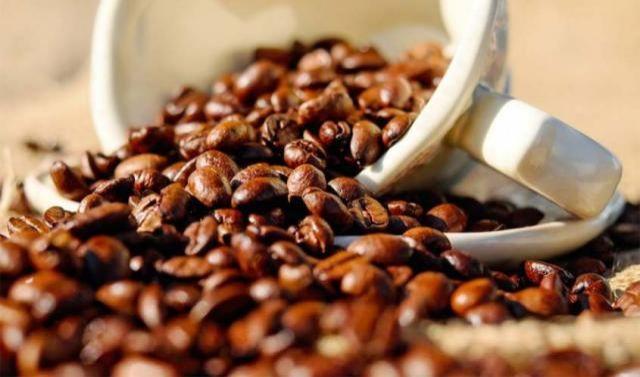 Embrapa Café]Rondônia reduz 54% da área plantada com café e produtividade cresce 154% na última década
