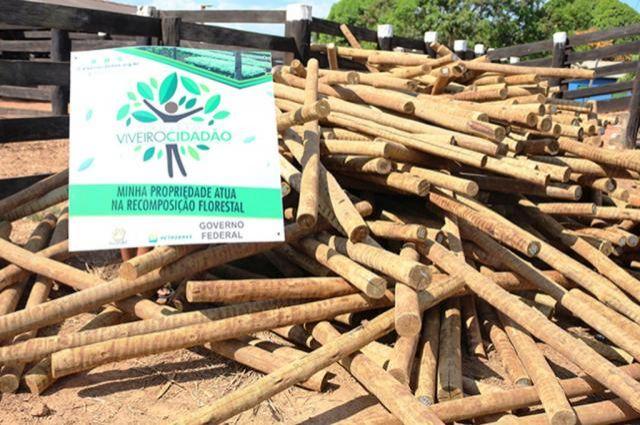 Recuperação de áreas: Materiais de isolamento começam a ser entregues pela Ecoporé