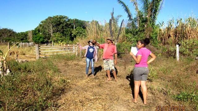 Projeto Viveiro Cidadão: Oportunidade para jovens agricultores