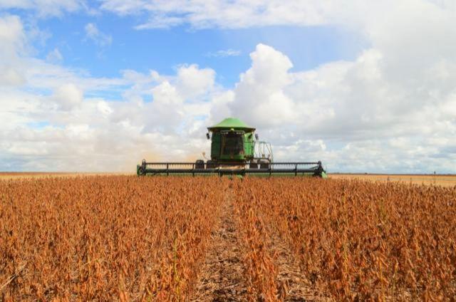 Idaron cadastra produtores de soja de Rondônia para garantir plantio saudável