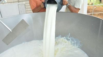 Pesquisa em RO contribui para a melhoria da qualidade do leite