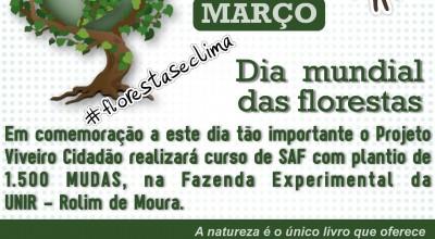 Viveiro Cidadão e projetos patrocinados pela Petrobras promoverão plantio simbólico em todo o Brasil nesta quinta (21)