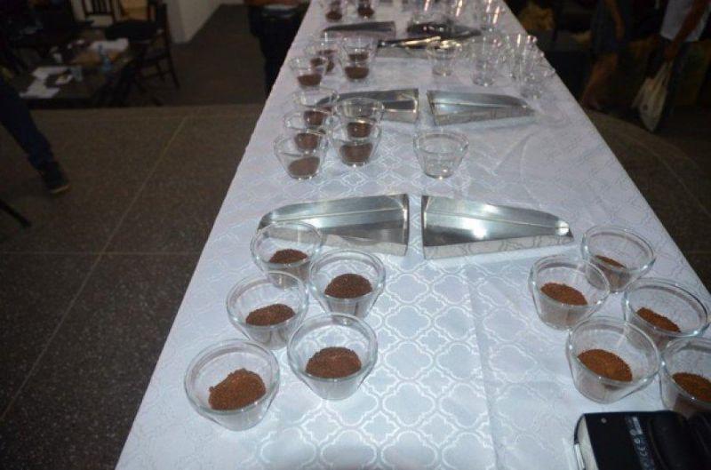 Abertas inscrições do Concurso de Qualidade do Café (Concafé)