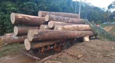 Madeiras caem de caminhão durante carregamento e trabalhador morre esmagado em Monte Negro