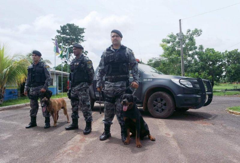 4º Batalhão sedia treinamento de busca e resgate com cães