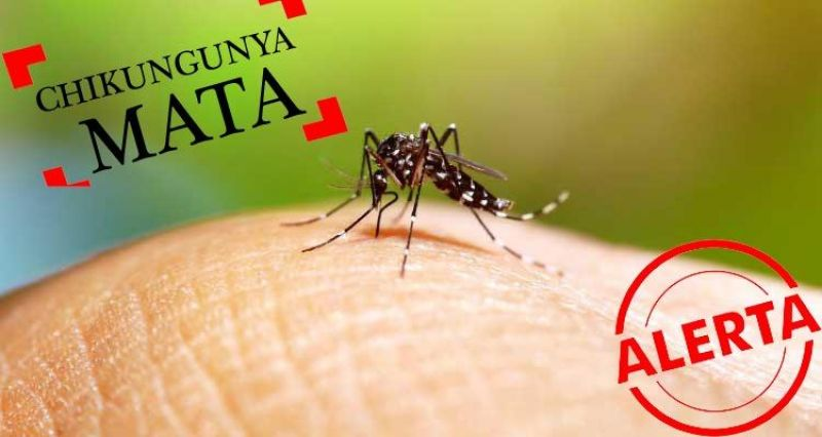 Jovem rolimourense morreu vítima de Chikungunya