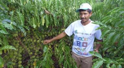 Produtor rural de Rolim de Moura e premiado no Projeto Rural Sustentável, vídeo