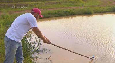 Sal na piscicultura? Aprenda 'truques' para cuidar da água dos peixes em cativeiro