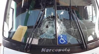 Pássaro atinge pára-brisa de ônibus que ia de Vilhena para Colorado, mas motorista evita capotamento