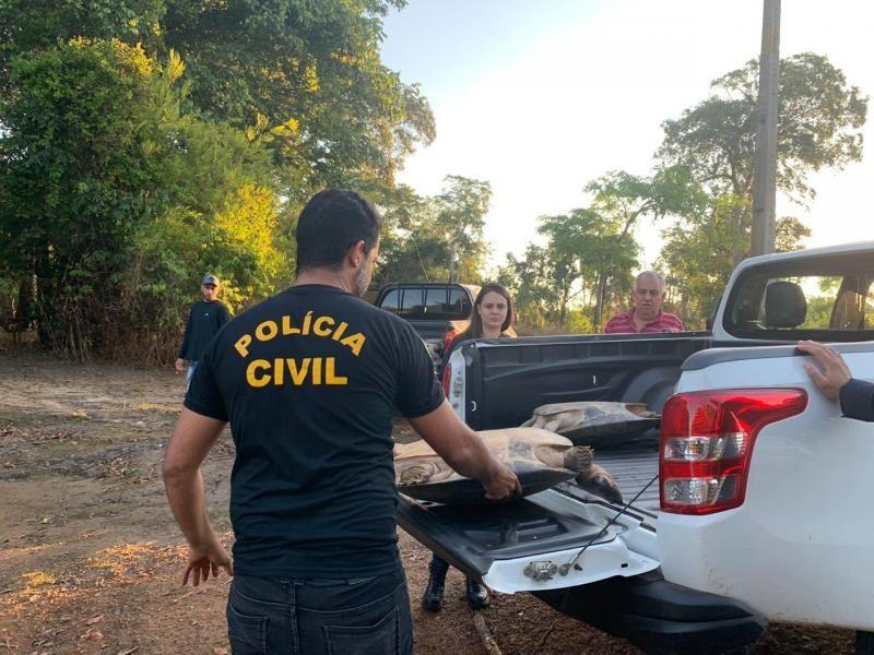 Policia Civil de Costa Marques juntamente com a Polícia Militar e SEDAM fazer a soltura de tartarugas