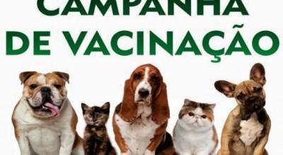 Rolim: Campanha de Vacinação contra Raiva terá início dia 22