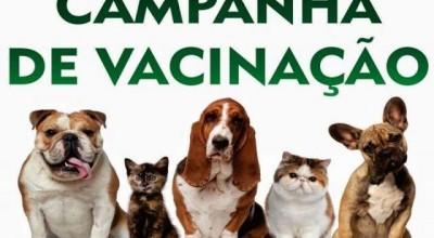 Rolim de Moura - Campanha de Vacinação Antirrábica Canina e felina terá início dia 22