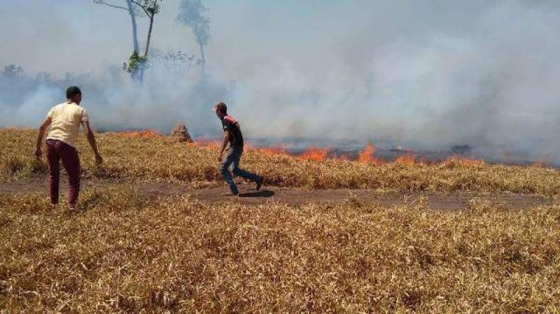 Durante período de estiagem, incêndios continuam castigando Vilhena e Chupinguaia; polícia é acionada nas duas cidades