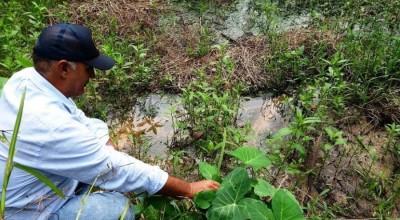 RO: Produtor rural deverá aderir ao Programa de Regularização de Áreas Degradadas