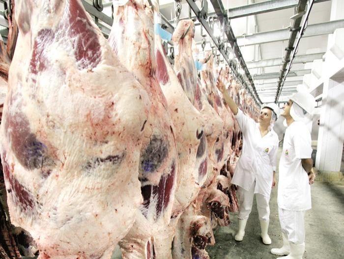 Arroba do boi gordo tem novo aumento e atinge R$ 235
