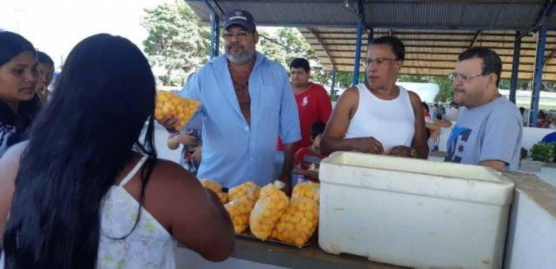 Para evitar atravessadores, indígenas da região aprendem a beneficiar piqui e vendem fruto em feira livre de Vilhena